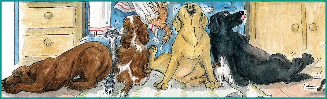 Chopping Boards & Trays