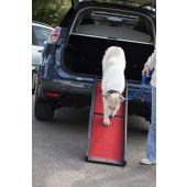 Folding Dog Ramp