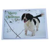 BASC Christmas Card Spaniel in the Snow