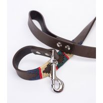 Argentine Leather Dog Lead - Green/Red/Navy