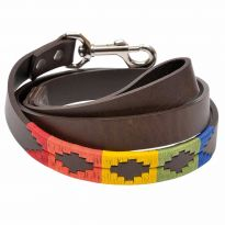 Argentine Leather Dog Lead - Rainbow