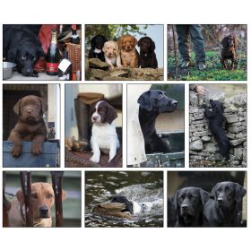 Working Dogs Gift Card Set of 10