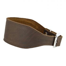 Leather Whippet/Greyhound Collar