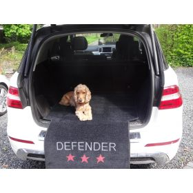 The Boot Defender