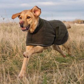Quiltknit Warm and Dry-Fast Dog Coat