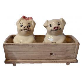 Handmade Piggy Salt & Pepper Set