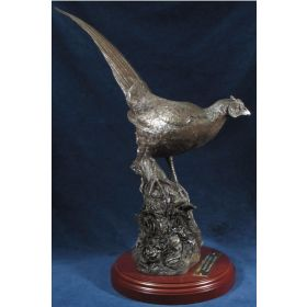 Bronze Cock Pheasant