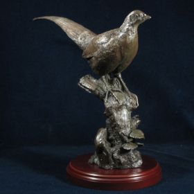 Bronzed Hen Pheasant