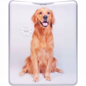Pocket Flash Torch Golden Retriever