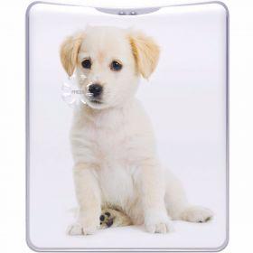 Pocket Flash Torch Retriever Puppy