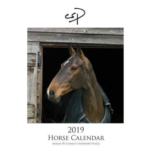2019 Horse Calendar Large
