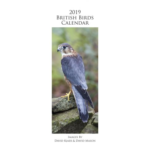 British Bird By David Kjaer 2019 Slim Calendar