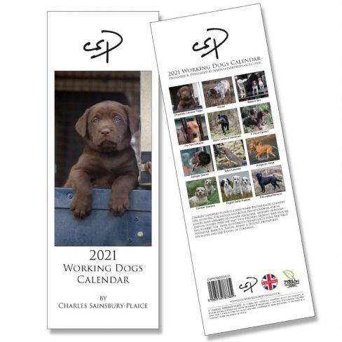 2021 Working Dogs Calendar by CSP