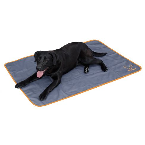 Pest Repeller Dog Mat