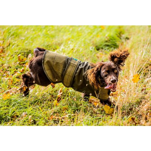 Alan Paine Country Tweed Dog Coat Lichen