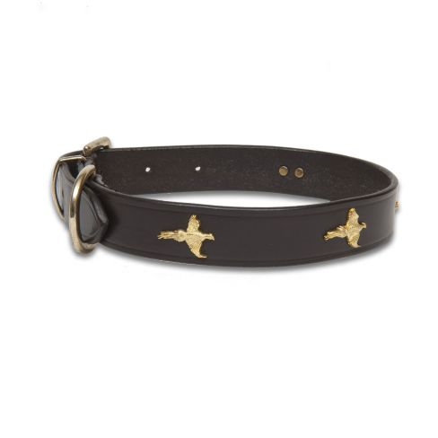 Leather Collar Pheasant