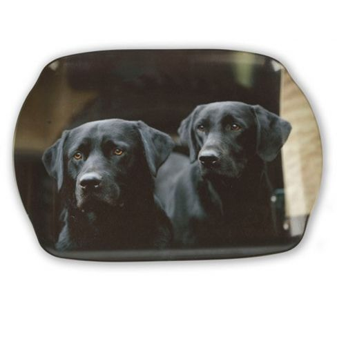 Black Labrador Tray