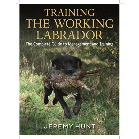 Training the Working Labrador by Jeremy Hunt