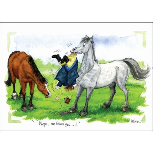 What No Polo's Worktop Saver