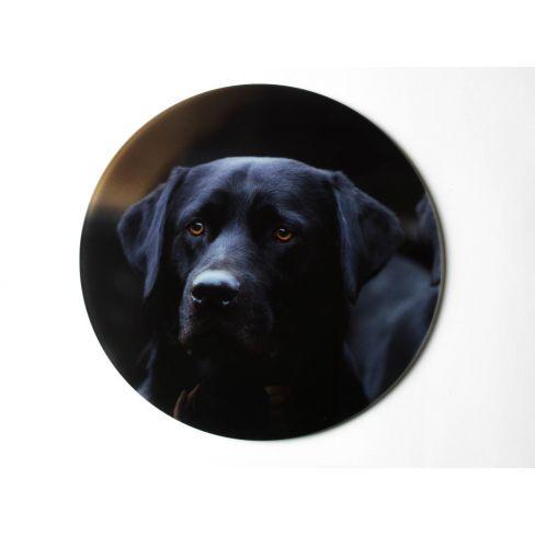 Heat Resistant Glass Platter - Labrador
