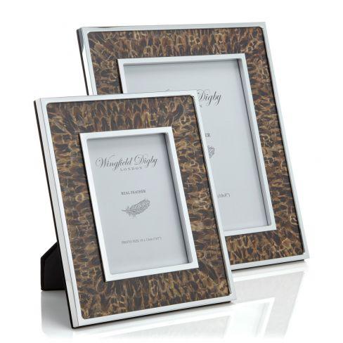 Hen Pheasant Feather Frame