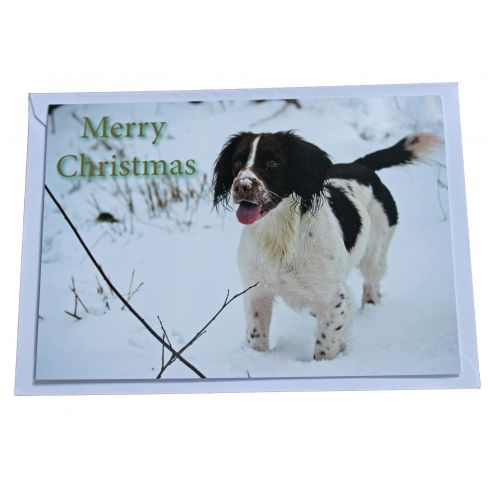 BASC Christmas Card Spaniel in the Snow