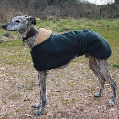 Greyhound, Saluki or Whippet Hunter Dog Coat