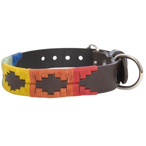 Argentine Leather Dog Collar Rainbow