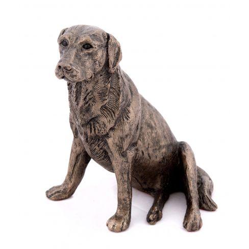 Nigel Labrador Bronze