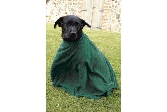 Dri-Dog Bag - Green