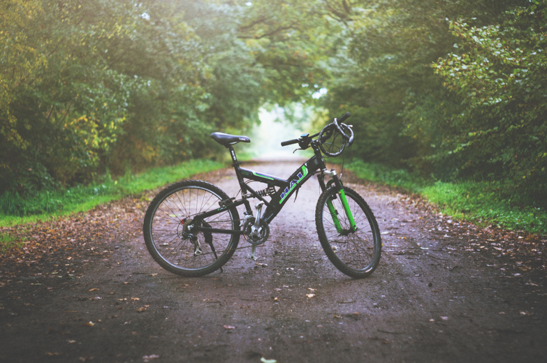 bike on a path in the forest