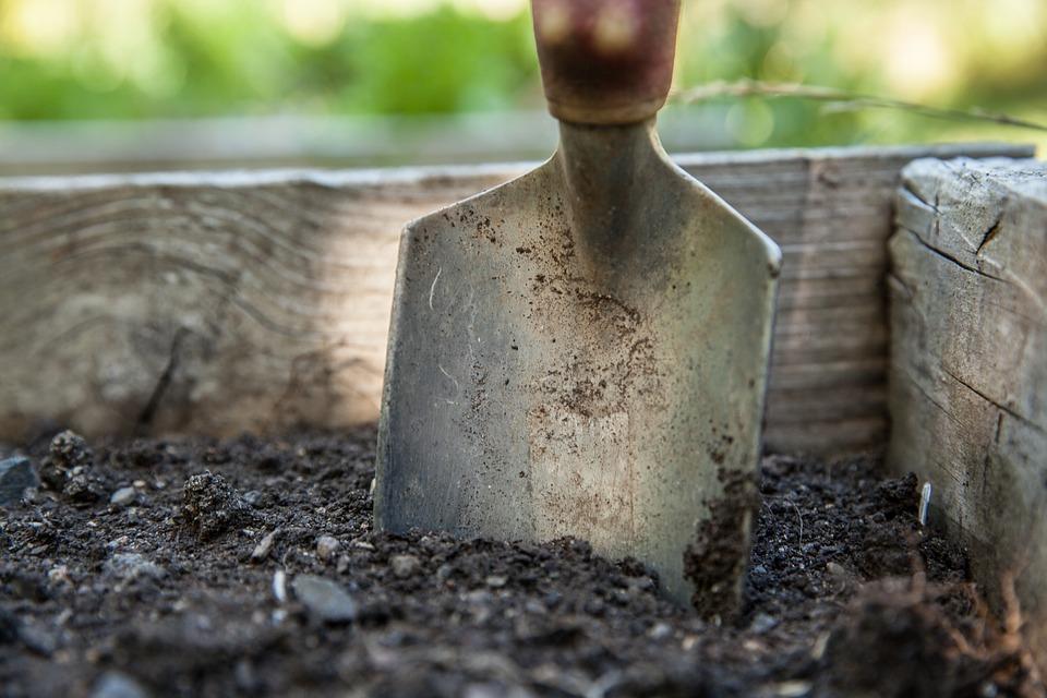 A trowel in soil