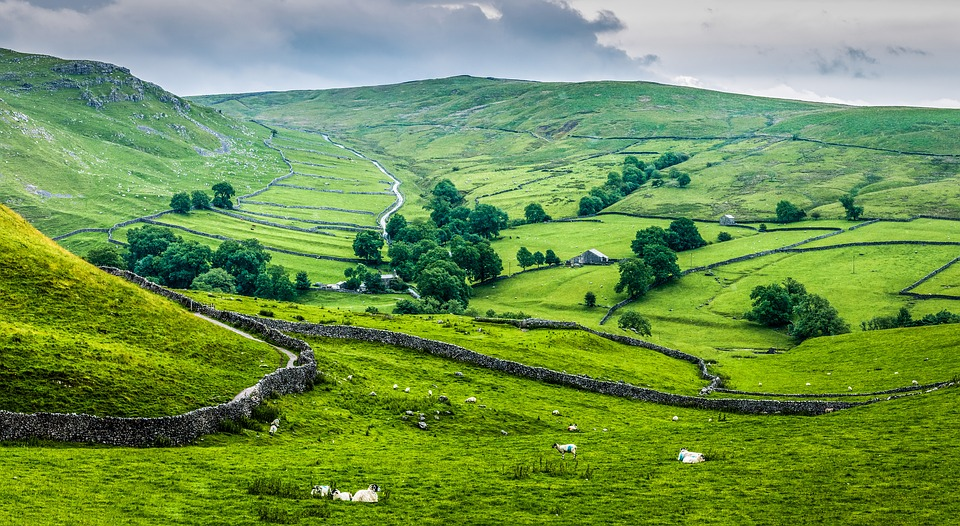 View of the countryside in Yorkshire