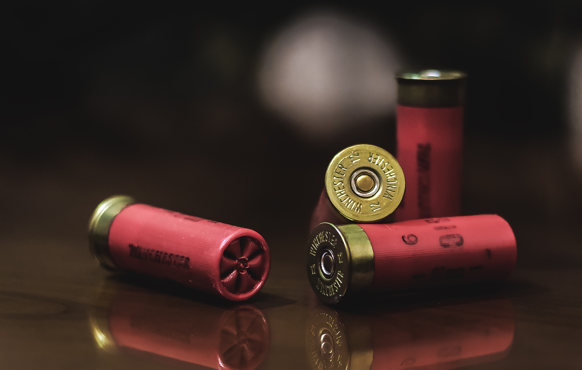 a selection of shotgun cartridges
