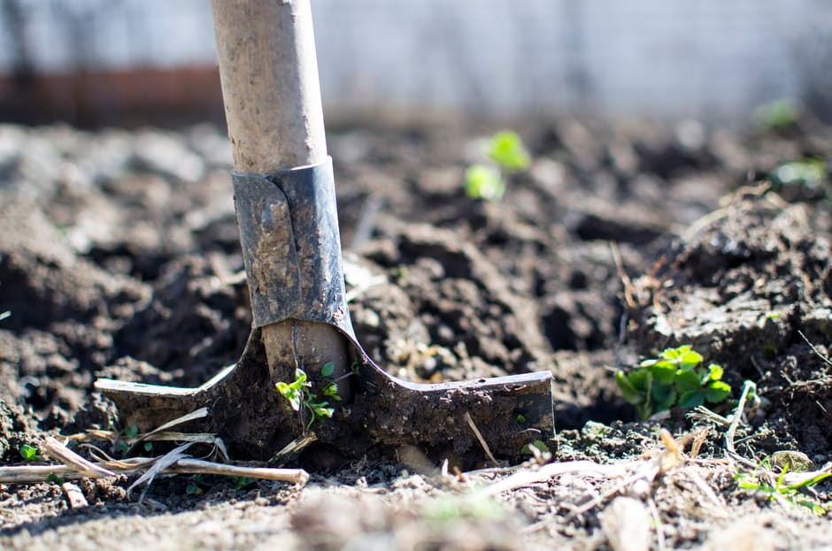 A spade digging into the ground in a garden.