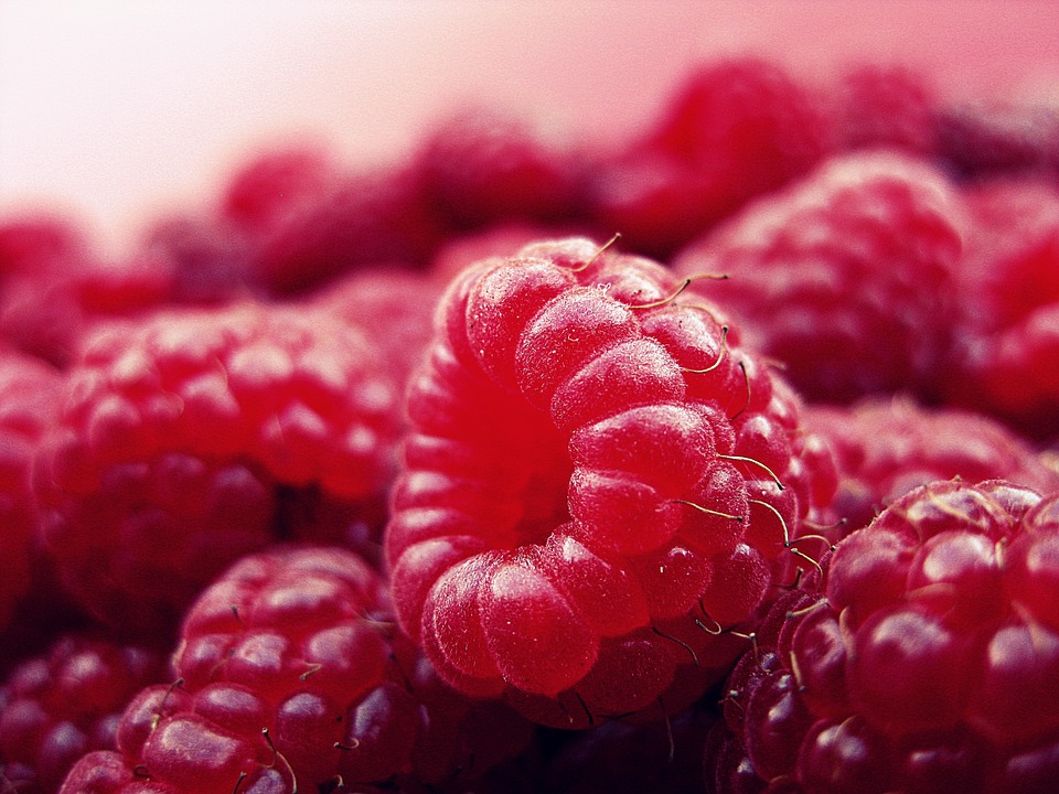 Close shot of raspberries