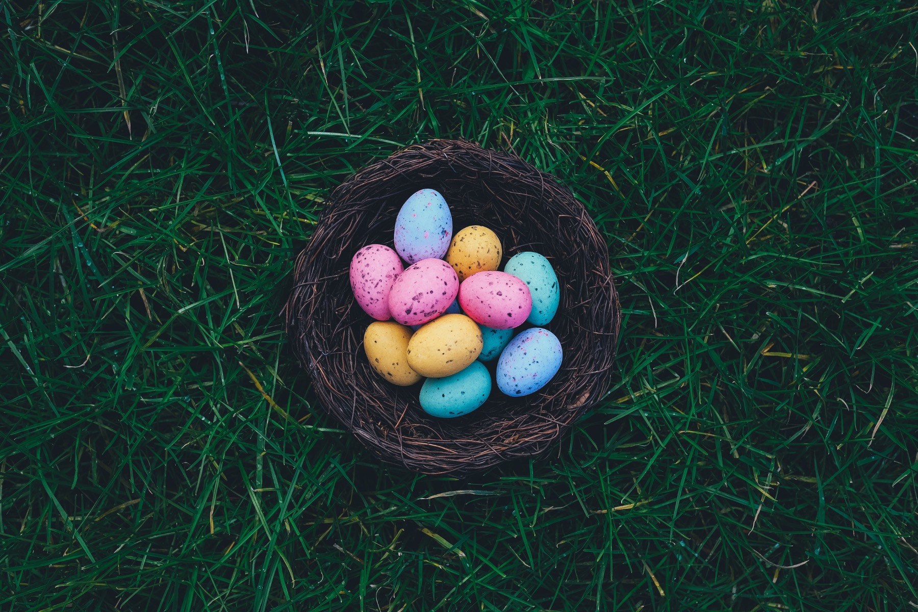 A selection of brightly coloured eggs laid in a wooden nest on some grass.