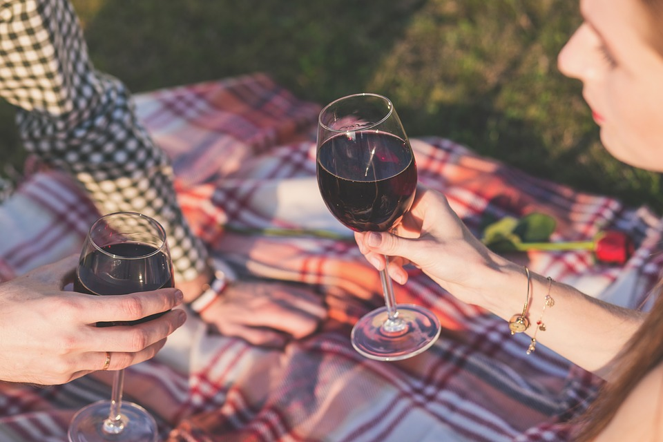 couple drinking wine on a picnic blanket