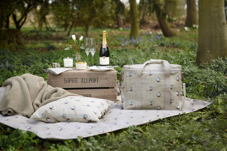 Cooler bag on a picnic blanket