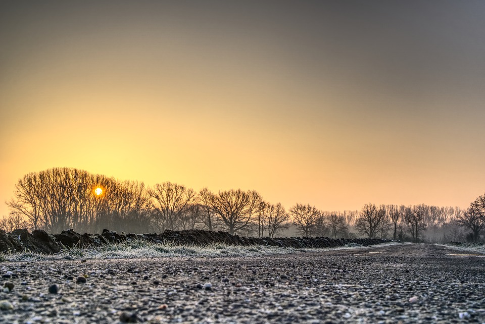 A field covered in frost during the morning sunrise.