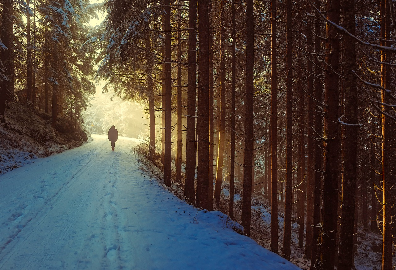 A person walking on a snowy road in the woods during winter